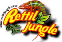 Rettiljungle